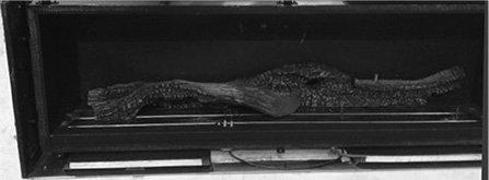 Seamless landscape gas fireplace body